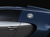 bugatti-veyron-sang-bleu-7